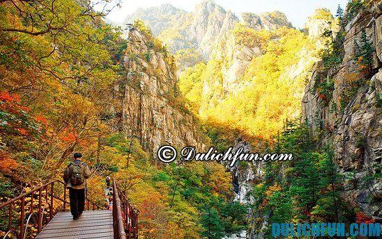 Điểm tên các địa điểm tham quan du lịch đẹp, nổi tiếng ở Hàn Quốc. Công viên quốc gia Seoraksan, địa điểm tham quan tuyệt vời ở Hàn Quốc
