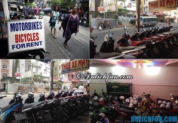 Kinh nghiệm thuê xe máy ở Đà Lạt. Địa chỉ thuê xe máy giá rẻ an toàn ở Đà Lạt
