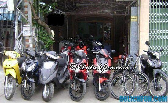 Địa điểm thuê xe máy tốt nhất Đà Nẵng: Thuê xe máy ở đâu Đà Nẵng uy tín, chất lượng
