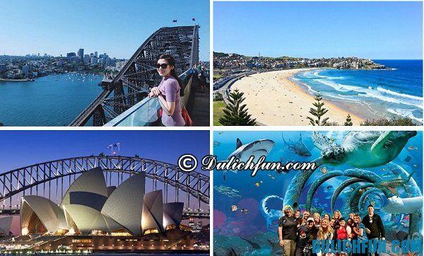 Địa điểm du lịch Sydney đẹp, hấp dẫn. Kinh nghiệm du lịch Sydney chi tiết nhất