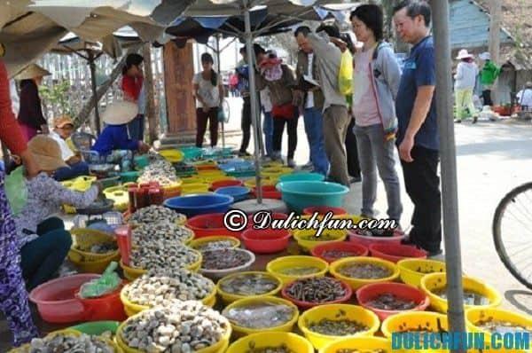 Các điểm tham quan, mua sắm ở Sầm Sơn