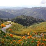 Khám phá du lịch Bắc Thái Lan: điểm đến & trải nghiệm