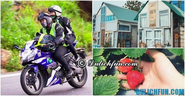 Kinh nghiệm thuê xe máy ở Đà Lạt: Thuê xe máy ở đâu Đà Lạt chất lượng, giá rẻ?