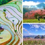 Nên du lịch Hà Giang vào mùa nào?