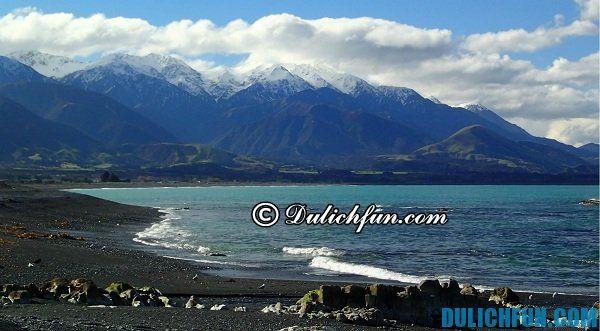 Kaikoura địa điểm du lịch thú vị ở New Zealand, những điểm đến hàng đầu khi du lịch New Zealand