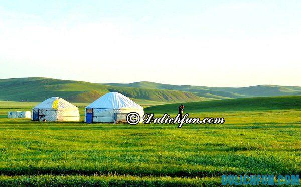 Kinh nghiệm du lịch Mông Cổ tự túc. Du lịch Mông Cổ chơi gì vui? Hướng dẫn tour du lịch Mông Cổ giá rẻ