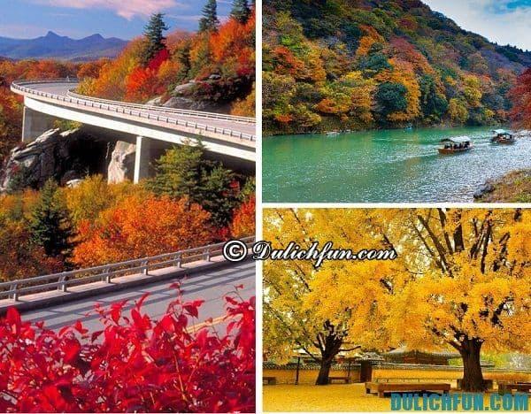 Đi du lịch Nhật Bản vào mùa nào tuyệt nhất?