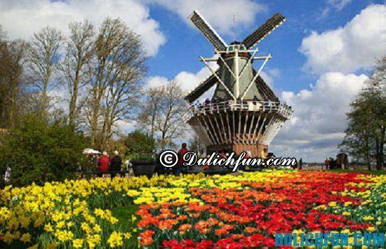 Du lịch Hà Lan nên đi vào mùa nào? Thời điểm nên đi du lịch Hà Lan