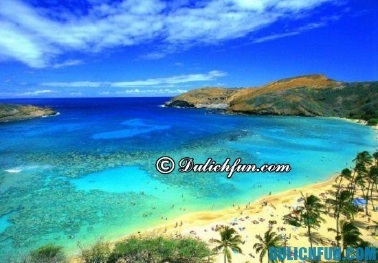 Nên đi du lịch Hawaii khi nào? Thời điểm nên đi du lịch Hawaii