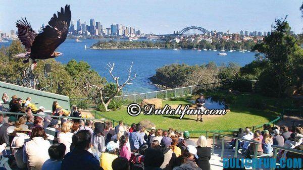 Vườn thú ở Taronga, địa điểm du lịch đông du khách ở Sydney. Khám phá du lịch ở Sydney