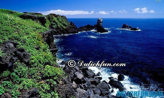 Đi đâu khi du lịch Hàn Quốc? Đảo Jeju, địa điểm tham quan du lịch ở Hàn Quốc