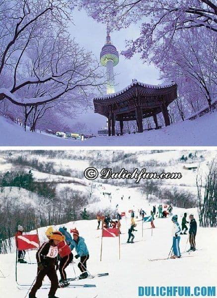 Du lịch Hàn Quốc vào thời điểm nào, tháng mấy đẹp nhất? Nên đi du lịch Hàn Quốc mùa nào?