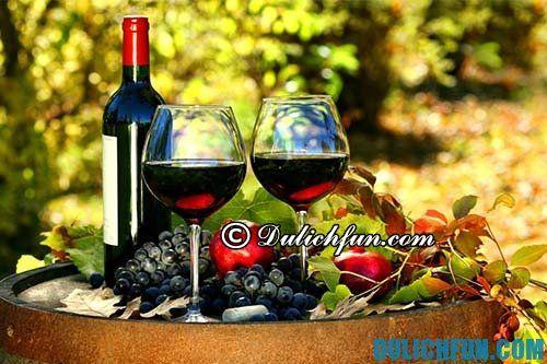 Tổng hợp những món ăn ngon, nổi tiếng ở Ý: Rượu vang thức uống nổi tiếng, hấp dẫn ở Italia