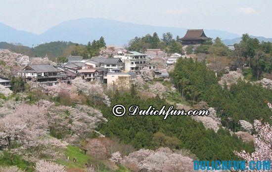 Hướng dẫn du lịch Nara: Núi Yoshino, địa điểm tham quan đẹp, hấp dẫn và thú vị ở Nara