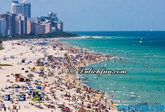 Đi đâu, chơi gì khi du lịch Miami? Bãi biển Miami, địa điểm tham quan, du lịch nổi tiếng ở Miami