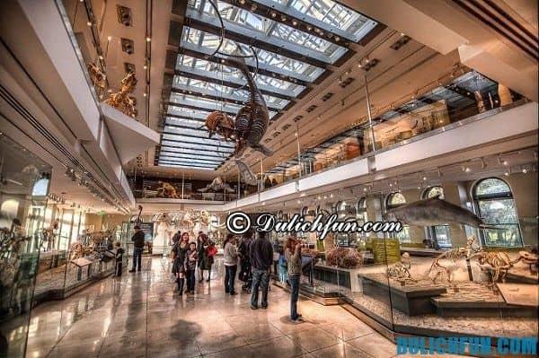 Bảo tàng lịch sử tự nhiên ở Los Angeles, địa điểm du lịch ở Los Angeles nổi tiếng, nhiều khách du lịch ghé thăm.