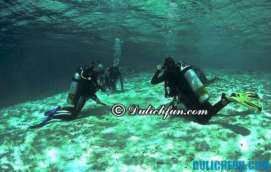 Bluetribe Moofushi, địa điểm tham quan, du lịch nổi tiếng nhất ở Maldives