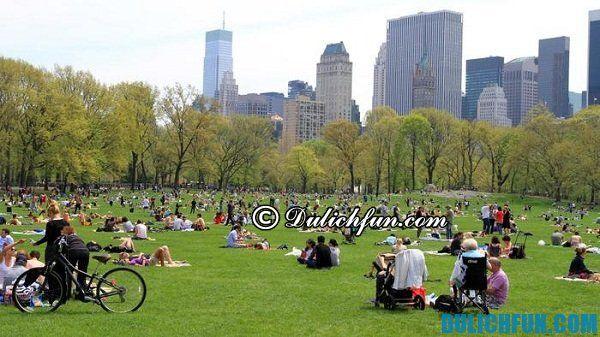 Central Park địa danh du lịch miễn phí nổi tiếng ở New York, ghé thăm những địa điểm du lịch miễn phí ở New York