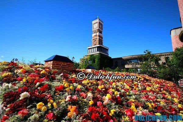 Điểm du lịch được yêu thích nhất ở Sapporo, Nhật Bản, nơi vui chơi nổi tiếng ở Sapporo