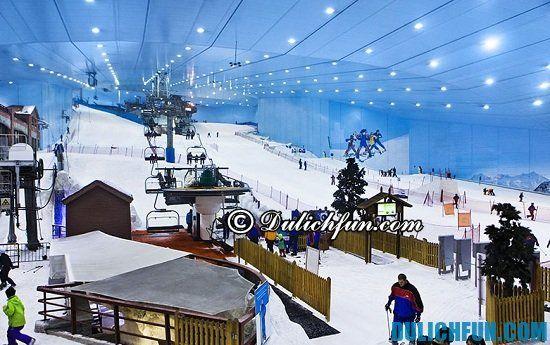 Công viên giải trí Ski Dubai, điểm tham quan du lịch hấp dẫn, thú vị nhất ở Dubai nhất định phải tới - Kinh nghiệm du lịch Dubai tự túc, giá rẻ