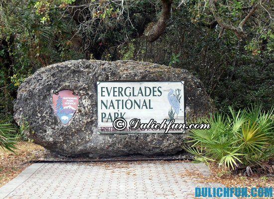 Tư vấn tour du lịch Miami giá rẻ: Công viên quốc gia Everglades, điểm tham quan, du lịch nổi tiếng ở Miami nhất định bạn phải tới