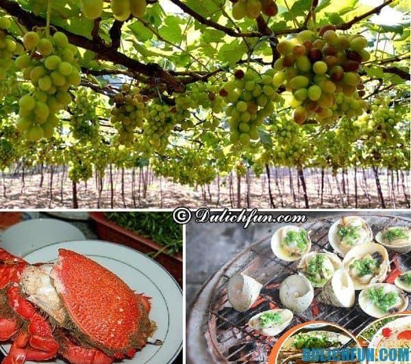 Du lịch Ninh Chữ nên ăn gì? Những món ăn ngon, đặc sản Ninh Chữ. Kinh nghiệm du lịch Ninh Chữ
