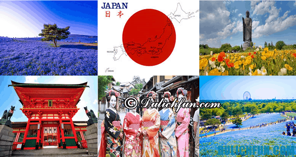 Lịch trình du lịch Nhật Bản 6 ngày 5 đêm đẹp, thú vị