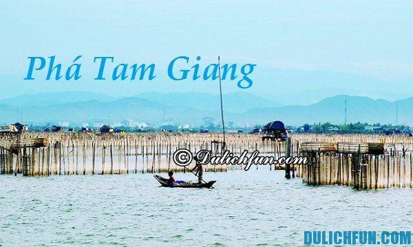 Kinh nghiệm du lịch Phá Tam Giang tự túc, giá rẻ: Khám phá vẻ đẹp của Phá Tam Giang, Huế