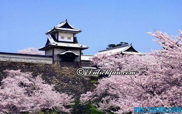 Lộ trình du lịch Nhật Bản 6 ngày 5 đêm: Tư vấn tour du lịch Nhật Bản 6 ngày 5 đêm giá rẻ, tự túc