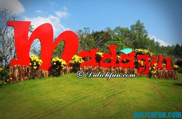 Kinh nghiệm du lịch Madagui Lâm Đồng tự túc, tiết kiệm: Du lịch Madagui có gì hấp dẫn