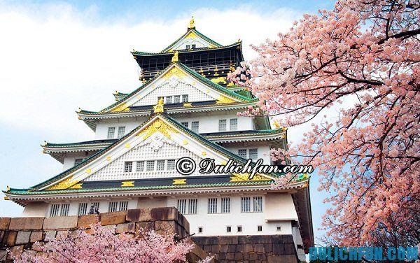 Kinh nghiệm du lịch Nagoya tự túc, giá rẻ: Du lịch Nagoya vui chơi, ăn uống ở đâu?