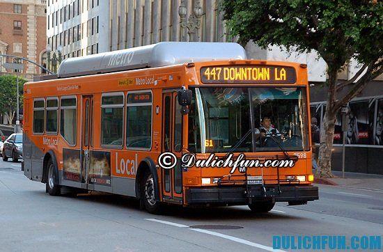 Di chuyển ở Los Angeles bằng phương tiện gì? Chia sẻ kinh nghiệm du lịch Los Angeles và phương tiện di chuyển ở Los Angeles