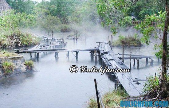 Nên đi đâu khi du lịch Hồ Tràm? Địa điểm tham quan du lịch nổi tiếng ở Hồ Tràm