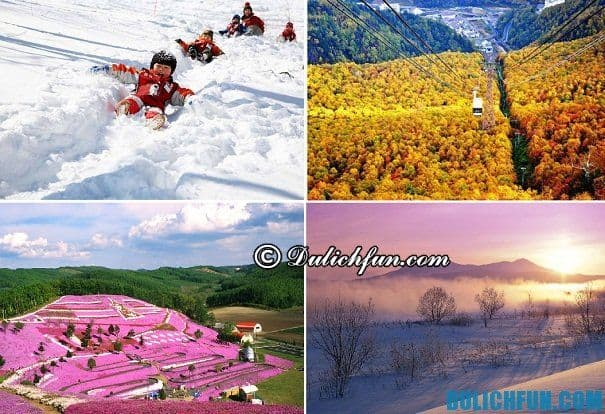 Du lịch Hokkaido khi nào đẹp? Thời điểm du lịch Hokkaido đẹp nhất. Kinh nghiệm du lịch Hokkaido