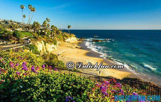 Du lịch Los Angeles mùa nào đẹp nhất? Thời gian thích hợp nhất nên đi du lịch Los Angeles