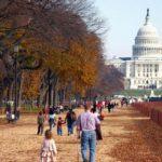 Thời điểm du lịch Washington hợp lý nhất, kinh nghiệm du lịch Washington đầy đủ, giá rẻ