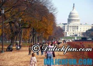 Chia sẻ kinh nghiệm du lịch Washington D.C đầy đủ, thú vị
