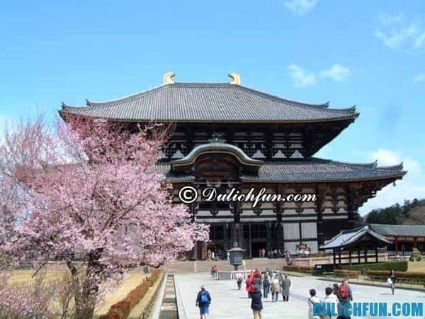 Các điểm tham quan đẹp ở Nara. Danh lam thắng cảnh nổi tiếng ở Nara, Nhật Bản
