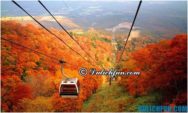 Hướng dẫn du lịch Hokkaido tự túc, giá rẻ: Điểm tham quan đẹp ở Hokkaido. Kinh nghiệm du lịch Hokkaido