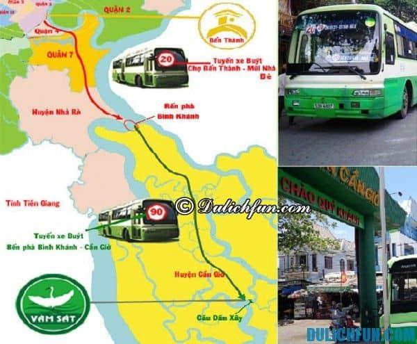 Du lịch Cần Giờ bằng xe bus. Phương tiện đi lại ở Cần Giờ. Kinh nghiệm du lịch bụi Cần Giờ