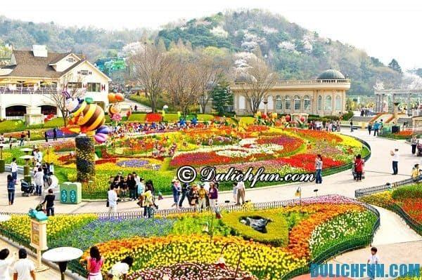 Những công viên giải trí nổi tiếng nhất ở Hàn Quốc: Hàn Quốc có những công viên vui chơi giải trí nào hấp dẫn?