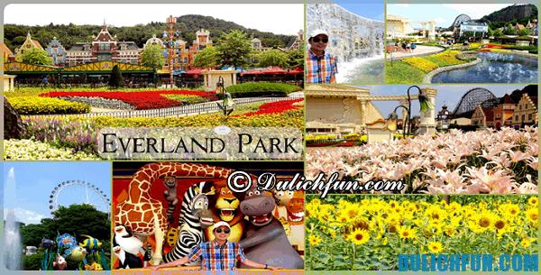 Công viên giải trí lớn nhất ở Hàn Quốc: Công viên giải trí nổi tiếng, ấn tượng và đẹp ở Hàn Quốc