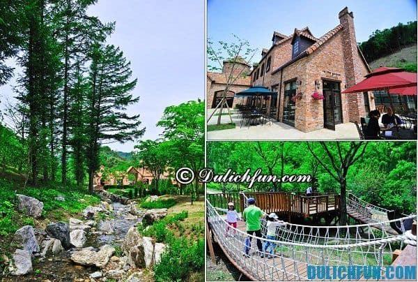 Du lịch Hàn Quốc mùa hè nên đi đâu?