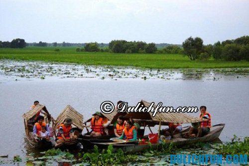 Kinh nghiệm du lịch vườn quốc gia Tràm Chim: Những hoạt động vui chơi giải trí ở vườn quốc gia Tràm Chim