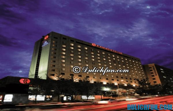 Kinh nghiệm đặt phòng khách sạn ở Seoul, Hàn Quốc: Khách sạn nào ở Seoul Hàn Quốc đẹp, giá bình dân