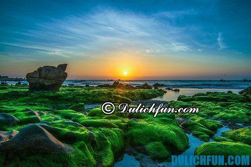 Kinh nghiệm du lịch biển Cổ Thạch: thời điểm đẹp du lịch Cổ Thạch