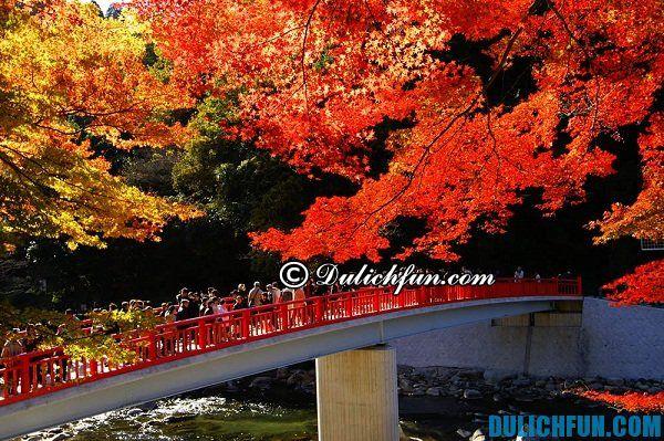 Lộ trình du lịch Nhật Bản 6 ngày 5 đêm thuận tiện, đúng mùa, đẹp