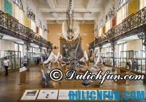 Đi đâu, chơi gì khi du lịch Monaco? Bảo tàng Hải Dương học, địa điểm tham quan, du lịch nổi tiếng ở Monaco
