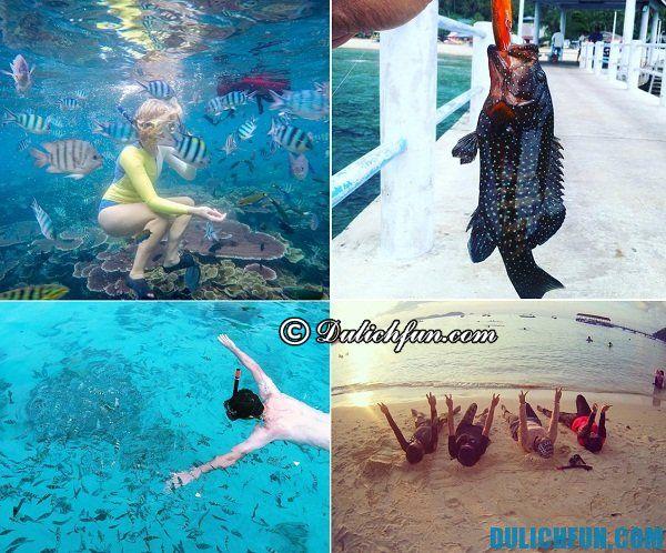 Các hoạt động vui chơi giải trí trên đảo Tioman. Kinh nghiệm du lịch đảo Tioman