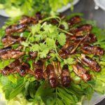 Ăn gì khi du lịch Yên Bái? Dế chiên giòn, món ăn ngon, đặc sản nổi tiếng ở Yên Bái